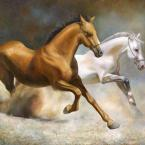 artwork: Running horses | online art gallery